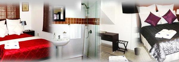 Standard Twin Suite