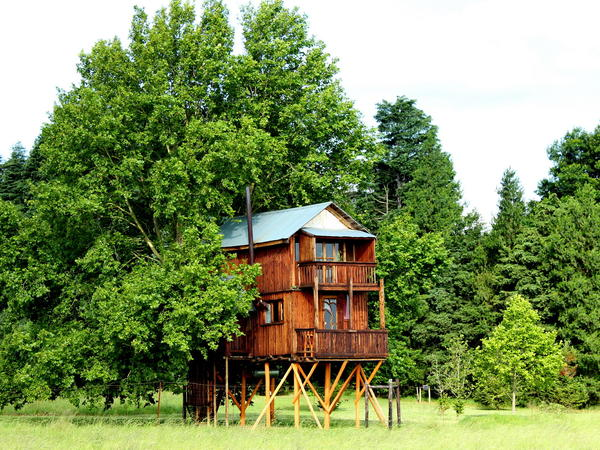 Faraway Treehouse