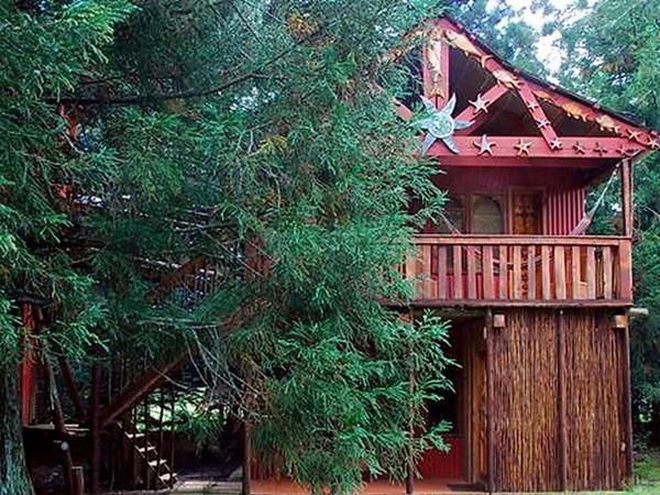 Planequarium Treehouse