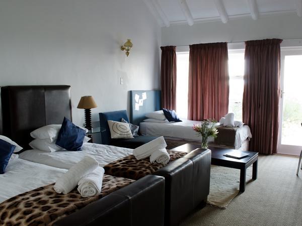 Fynbos Lodge - Room 3