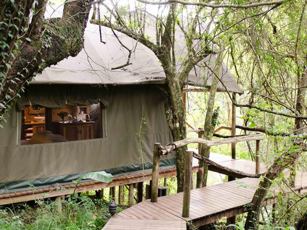 Stream Tented Suites (Twin)