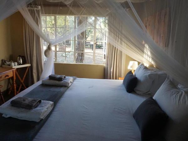 Double Room (Bushbaby)