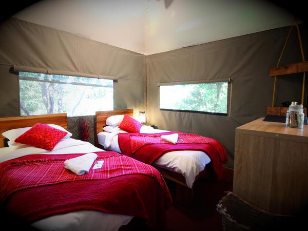 Bitou Room