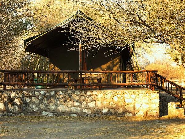 Meru Tents