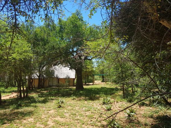 Nyala Luxury Bush Lodge