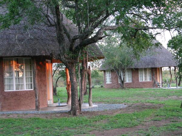 En-suite twin Rondavel huts (Ndlovu)