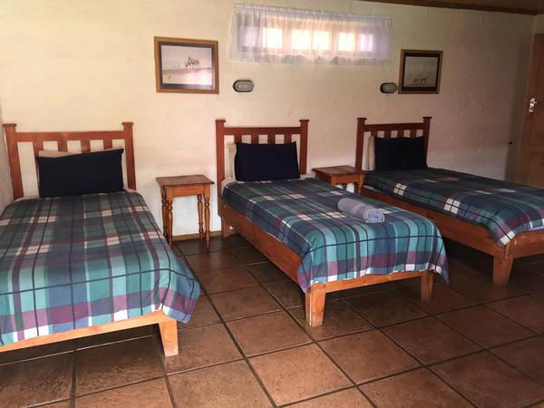 R16_3 Single Beds, Shower