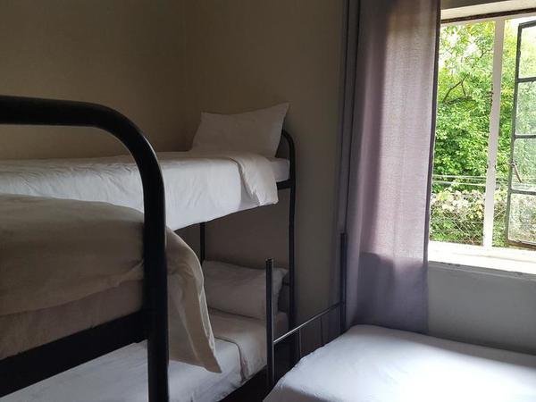 Mixed Dormitory Dorm D