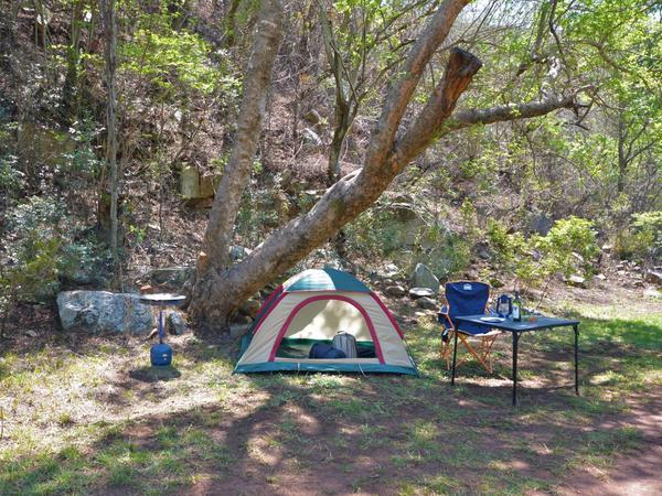 Eagle-5 Caravan & Tent Site (No Room)