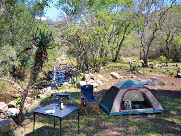 Loerie-3 Caravan & Tent Site (No Room)