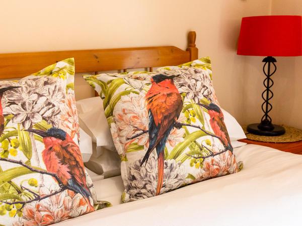African Birds Suite B&B Poolside Queen 2