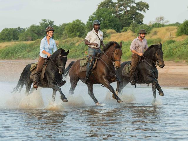 Horse Safaris