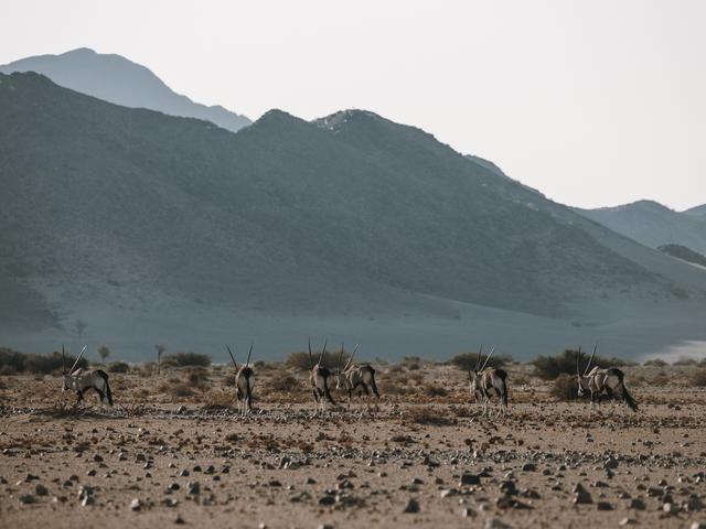 NAMIB MOUNTAIN TRAIL
