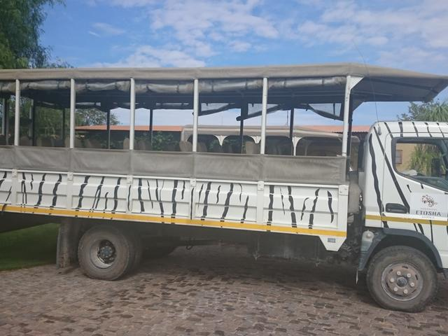Ganztagstour in den Etosha Nationalpark
