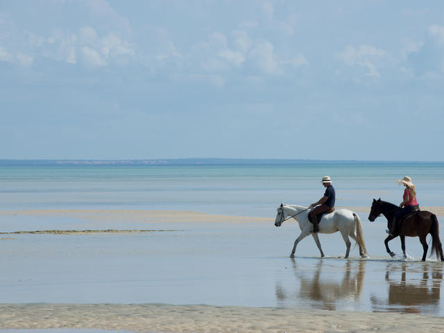 Horse Riding Safaris