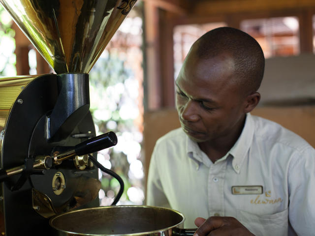 The 'Bean-to-Cup' Coffee Estate Tour