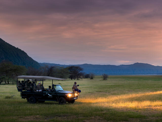 Night Game Drives (Additional Cost)
