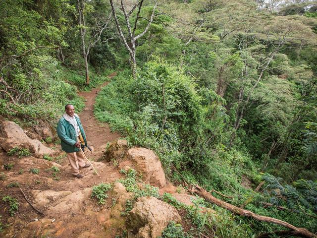 Walking Safaris - Farm to Ngorongoro Crater Rim Hike