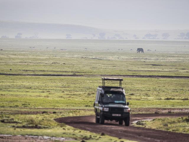 Safari - Ngorongoro Crater