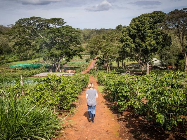 Farm Walks - Garden Walk
