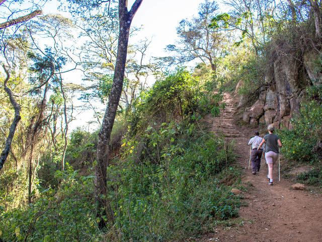 Walking Safaris -  Waterfall/Elephant Caves Walk