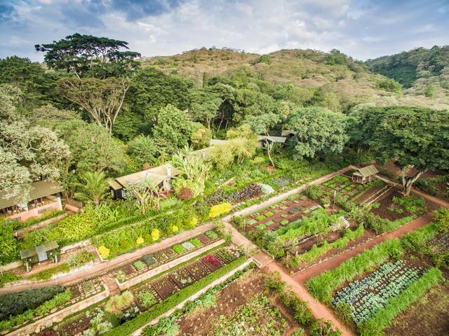Gibb's Farm Cottages