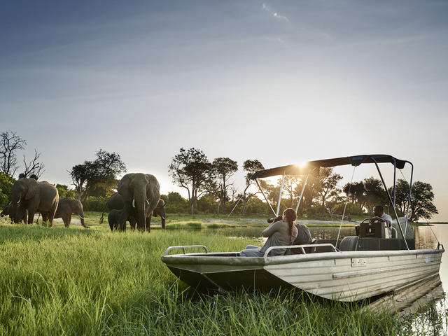Photographic Safari Cruise