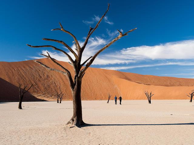 Kulala Desert Lodge - Visit Sossusvlei and Dead Vlei