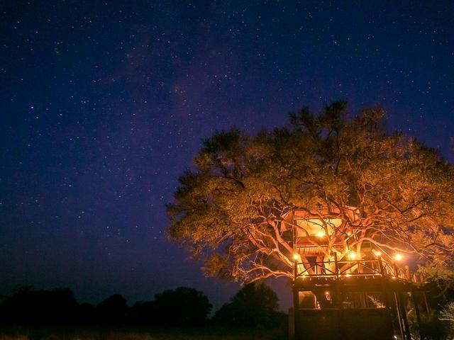 The Dove's Nest Treehouse