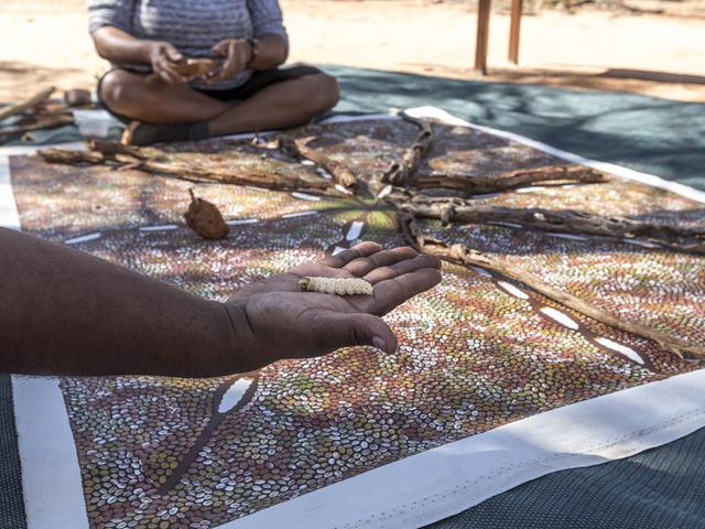 Karrke Indigenous Cultural Tour