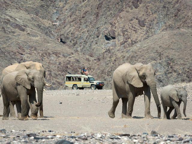 Hoanib Skeleton Coast - Nature drives