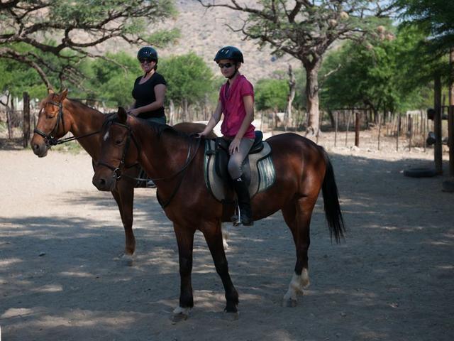 Pferde-Reiten