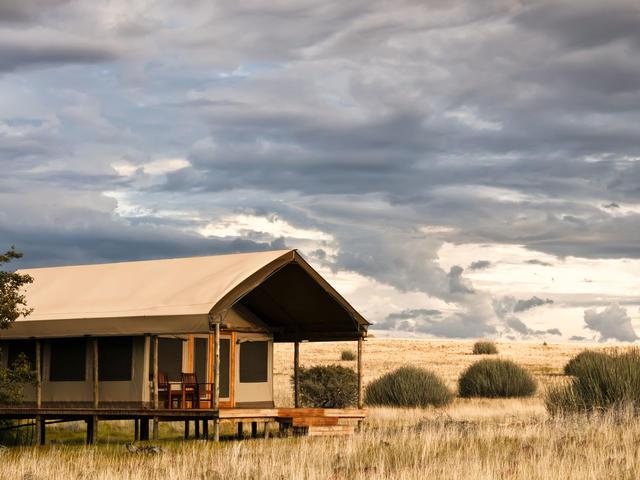 Desert Rhino Camp - Standard Tents