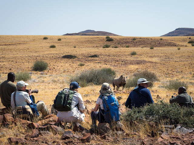 Desert Rhino Camp - Rhino tracking on foot and by vehicle
