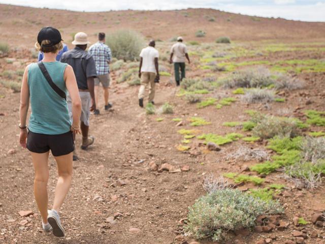 Desert Rhino Camp - Guided nature walks