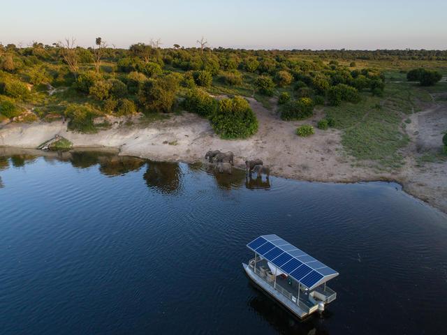 Chobe Game Lodge River Safaris