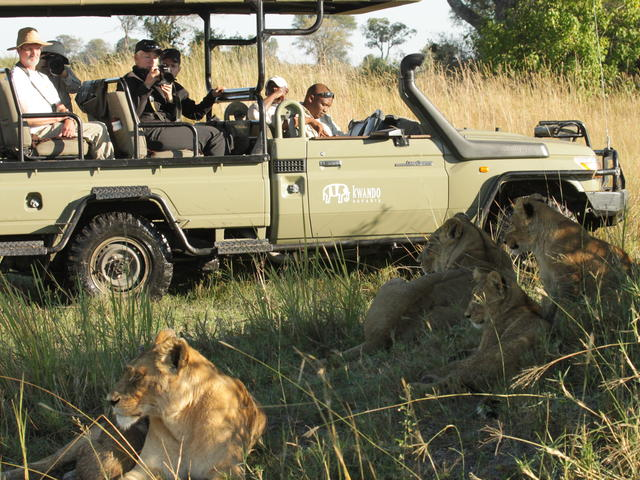 Game Drives - Day and Night