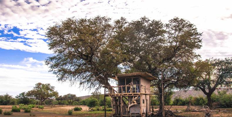 The Hobatere Tree House