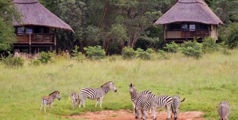Presidential Suites overlooking waterhole