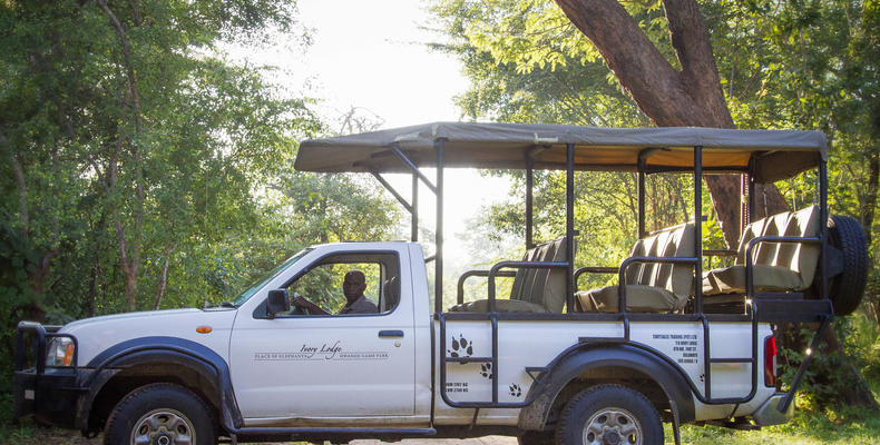 Ivory Game Drive Vehicle