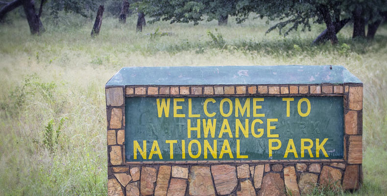 Welcome to Hwange National Park