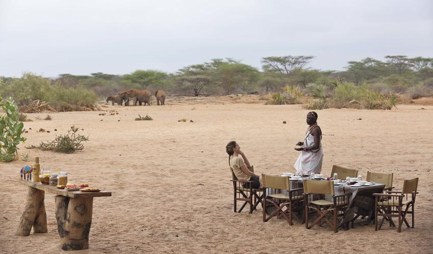 Breakfast by the dry river bed with elephants