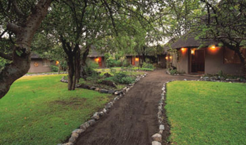 An intimate camp with rolling green lawns - an oasis in the bush