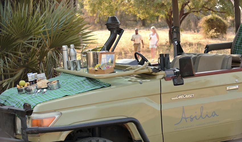 Roho ya Selous - morning game drive with packed picnic breakfast