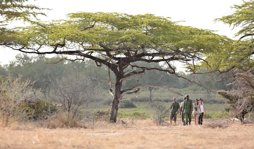 Roho ya Selous - walking safari