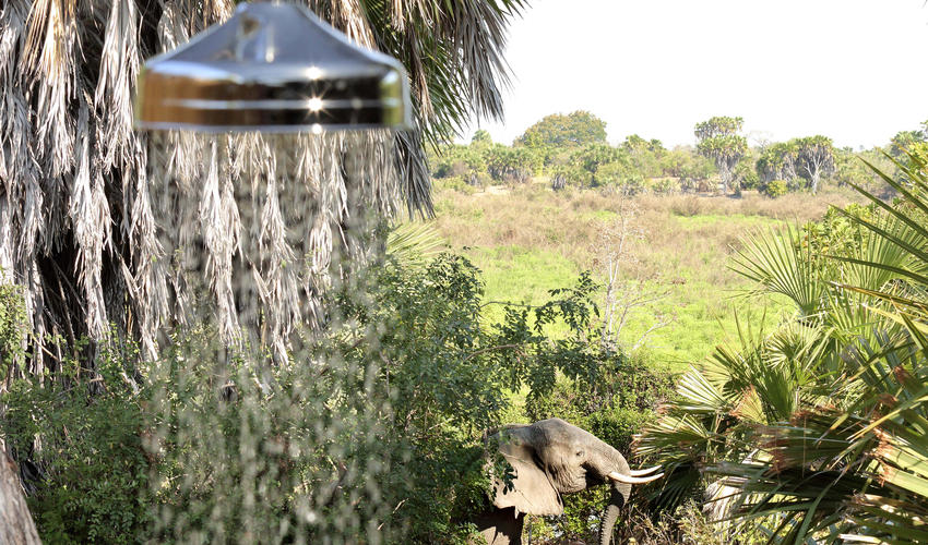 Roho ya Selous - outdoor shower with a view of the wildlife