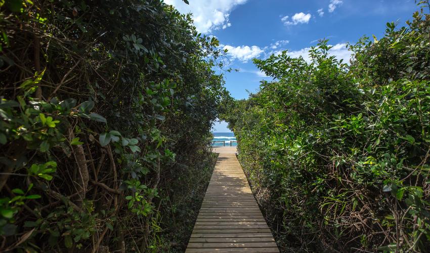 Walkway to Beach Deck - welcoming glimpse of the ocean