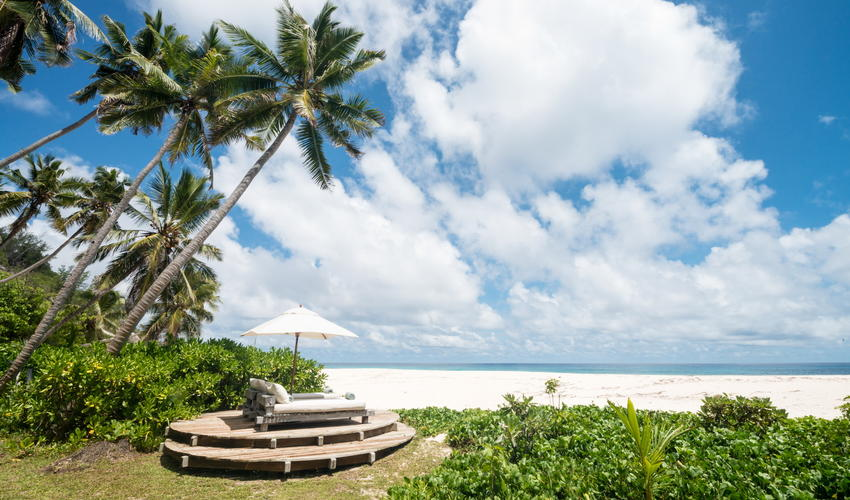 Palm trees and blue skies are iconic emblems of Seychelles