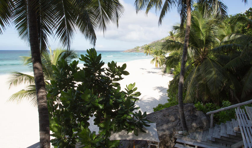 Villa North Island - the view down on to East Beach through the coconut palms