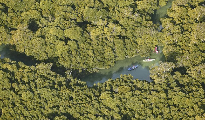 Kayaking at Sencar Island